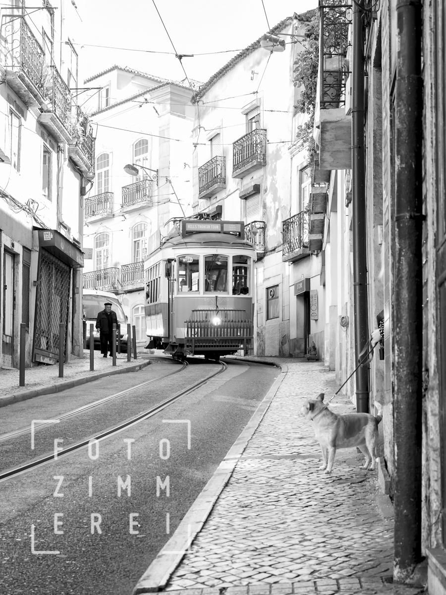 streetvarious (3 von 24)